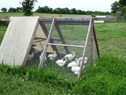 Alabama Organic Agriculture