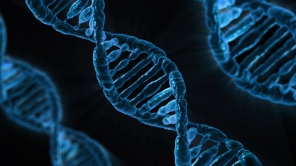 UAB Researchers Use CRISPR Technology to Target Childhood Syndrome