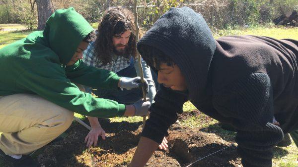 Woodlawn Students Growing a Healthier Neighborhood