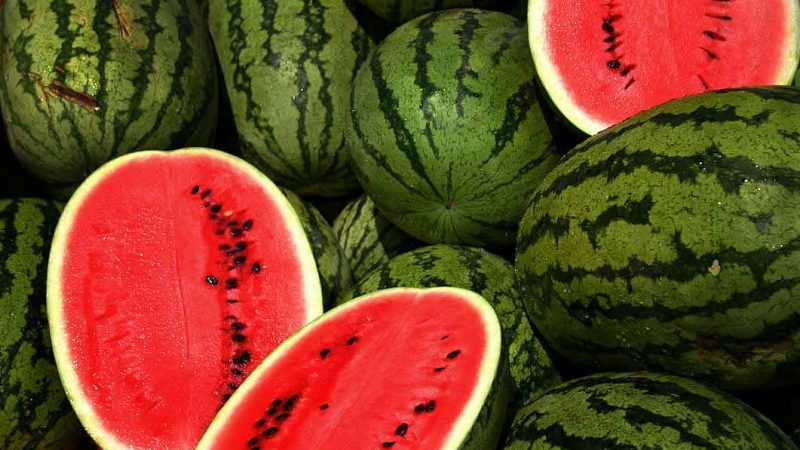 https://wbhm.org/wp-content/uploads/2004/08/Watermelon-800x450.jpg