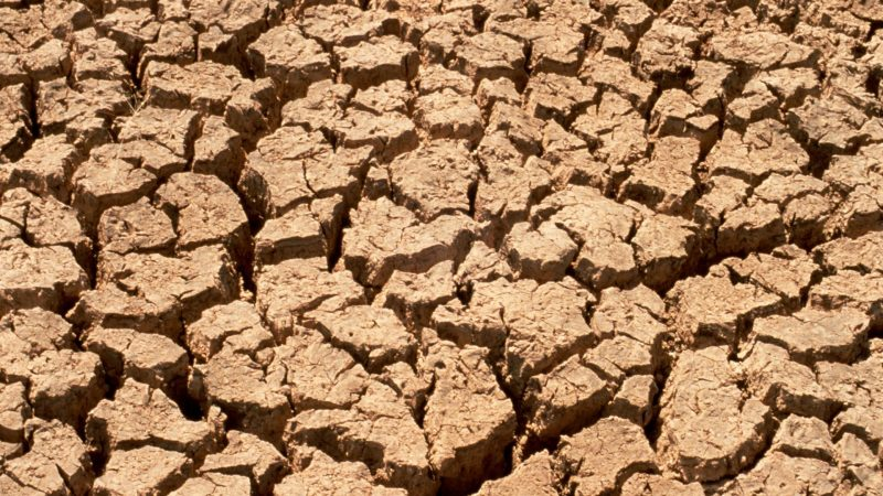 https://wbhm.org/wp-content/uploads/2008/06/drought-800x450.jpg