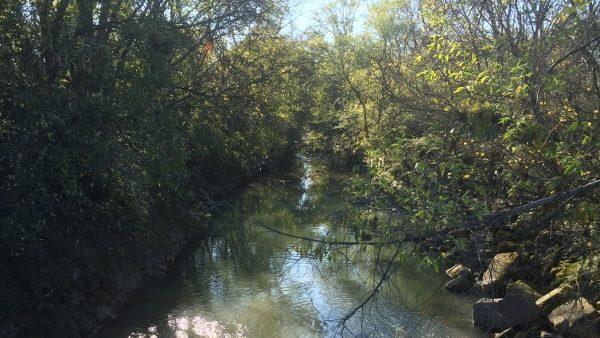 https://wbhm.org/wp-content/uploads/2015/11/Valley-Creek-600x338.jpeg