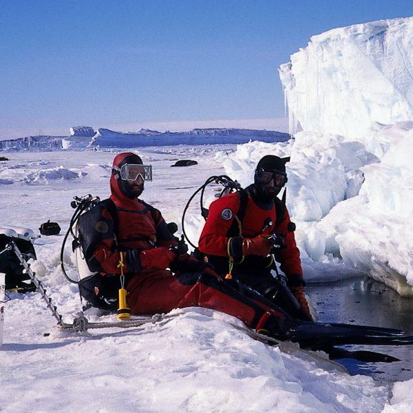 https://wbhm.org/wp-content/uploads/2018/09/antarctic.pictures.superb_031-600x600.jpg