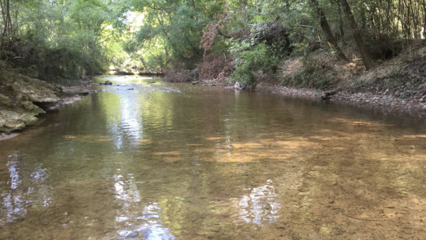 https://wbhm.org/wp-content/uploads/2018/12/River_Water_Fulmore_2018-600x338.png