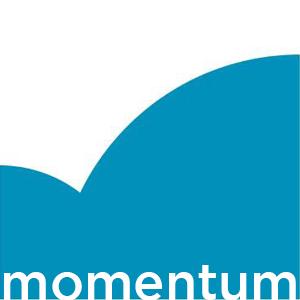 Momentum Leaders