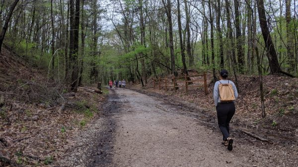 Getting Out For A Walk In The Woods? Social Distancing Still Applies
