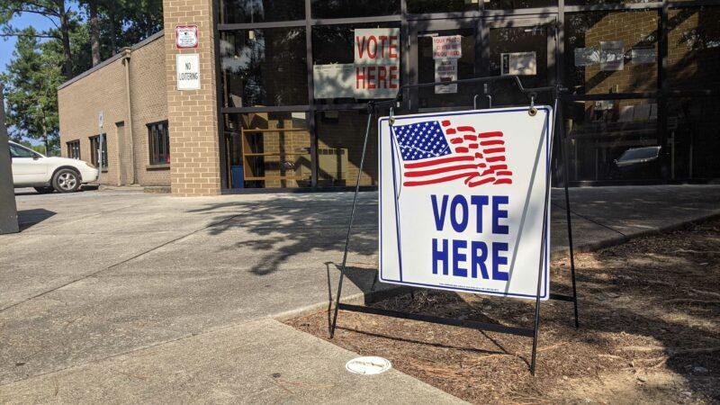 https://wbhm.org/wp-content/uploads/2021/08/Vote_Sign_Avondale-800x450.jpg